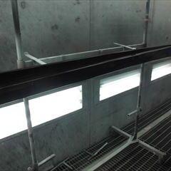 トヨタのウィッシュ(DBA-ZGE20G):左フロントドア、左リアドア、左サイドスポイラー板金塗装 作業工賃180,000円/合計金額(税込)198,000円